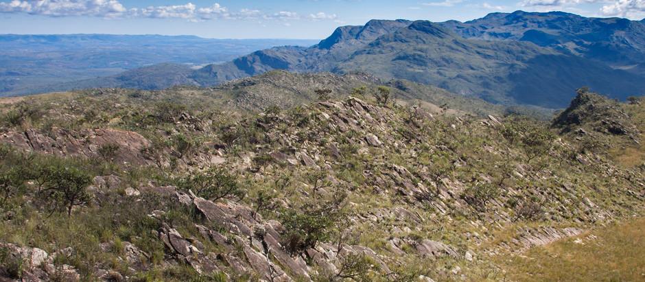 Um plano de ação para a conservação do campo rupestre.