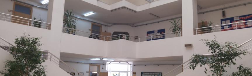 Hasan Polatkan Anadolu Lisesi Bina Girişi