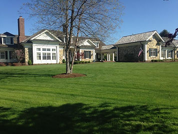 Lawn Care Program Total Lawn Care Inc An Organic
