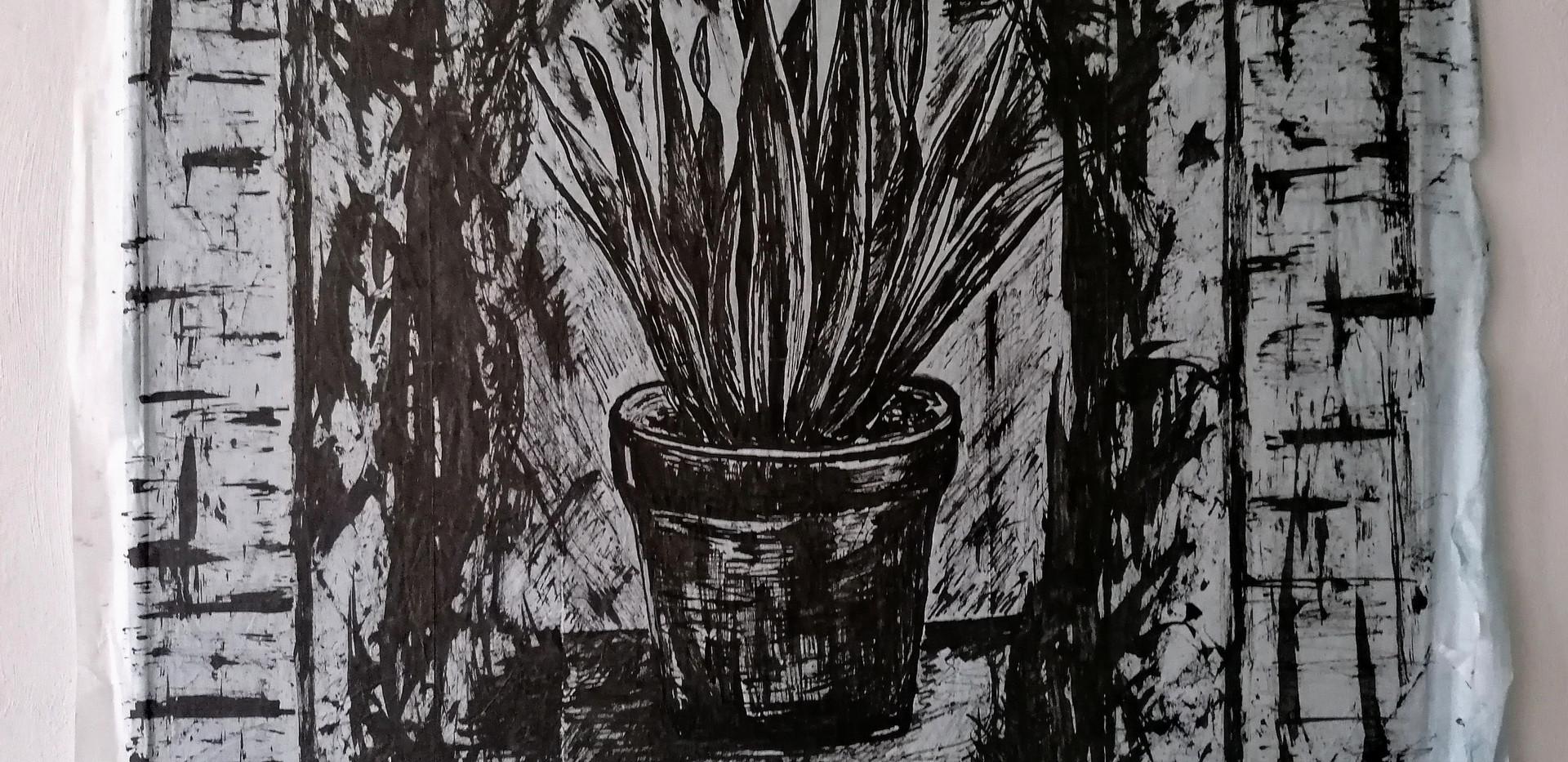 Hoezo Geraniums?
