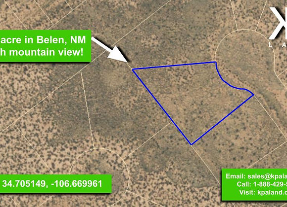 .25 Acre Vacant Lot #3 in Belen, NM (APN: 1-013-031-260-360-210300)