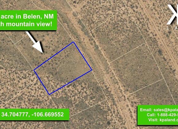 .25 Acre Vacant Lot #2 in Belen, NM (APN: 1-013-031-260-360-210320)