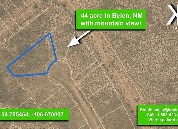 .44 Acre Vacant Lot #4 in Belen, NM (APN: 1-013-031-260-360-210290)