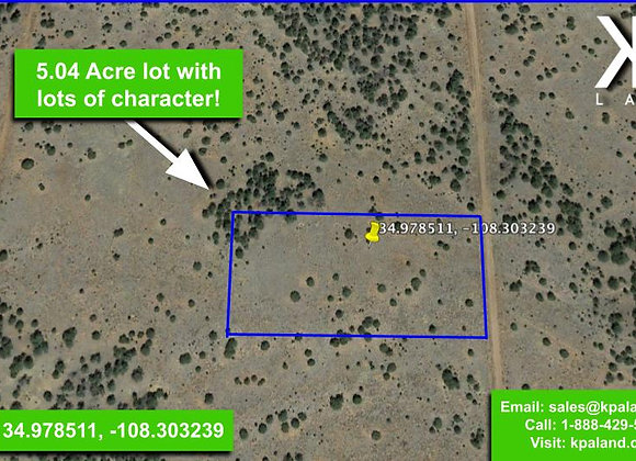 5.04 Acre Vacant Lot in Ramah, NM (APN: 2081050300160)