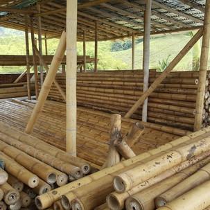 Bamboo Madridconstruction.jpg