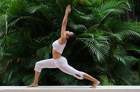 Yoga Pose
