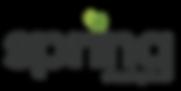Spring Logo Artboard 1_4x.png