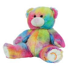 """Rainbow Bear 16"""""""