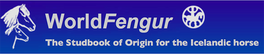 WorldFengurLogo-1.png