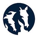 appfengur logo facebook light.jpg