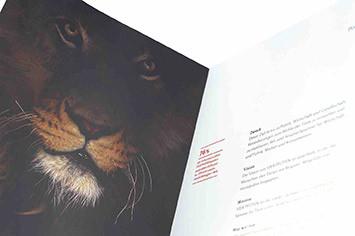 Vier Pfoten Sponsoren Broschüre