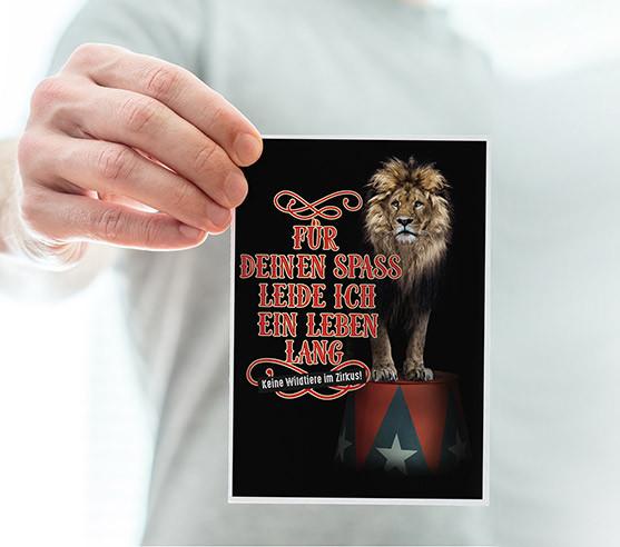 Petitionskampagne gegen Wildtiere im Zirkus