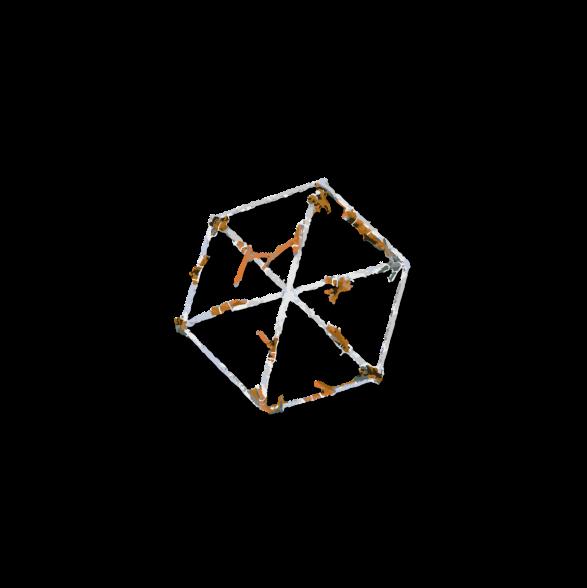 Reefstarx.png