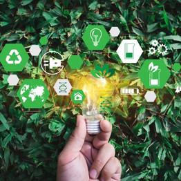 Como a Flash Courier tem se movimentado perante as tendências sustentáveis