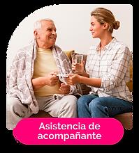 asistencia-acompañantes.png