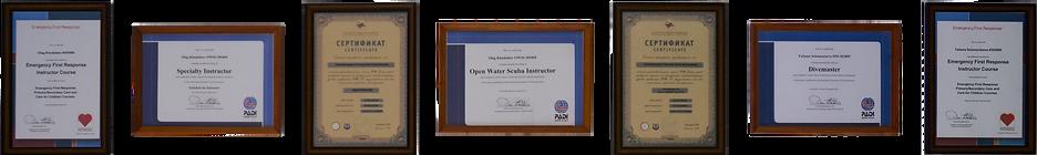 сертификаты по дайвингу