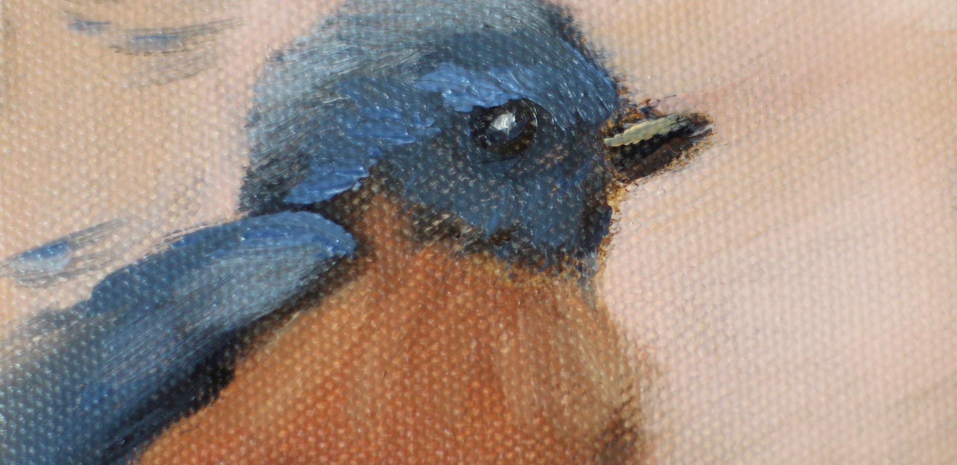 Winter Blue Bird