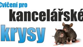 Cvičení pro kancelářské krysy
