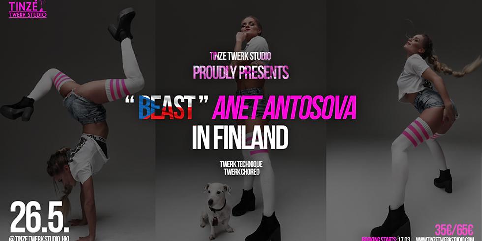 Anet Antosova Workshops