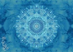 Mandala for Lotus Mushroom by Noble Arts Project - 2016 - web