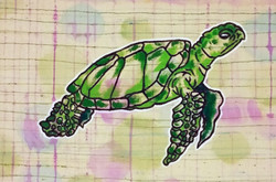 Sea Turtle sold