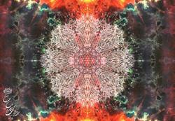 Mandala for Ganesha by Noble Arts Project - 2016 - web