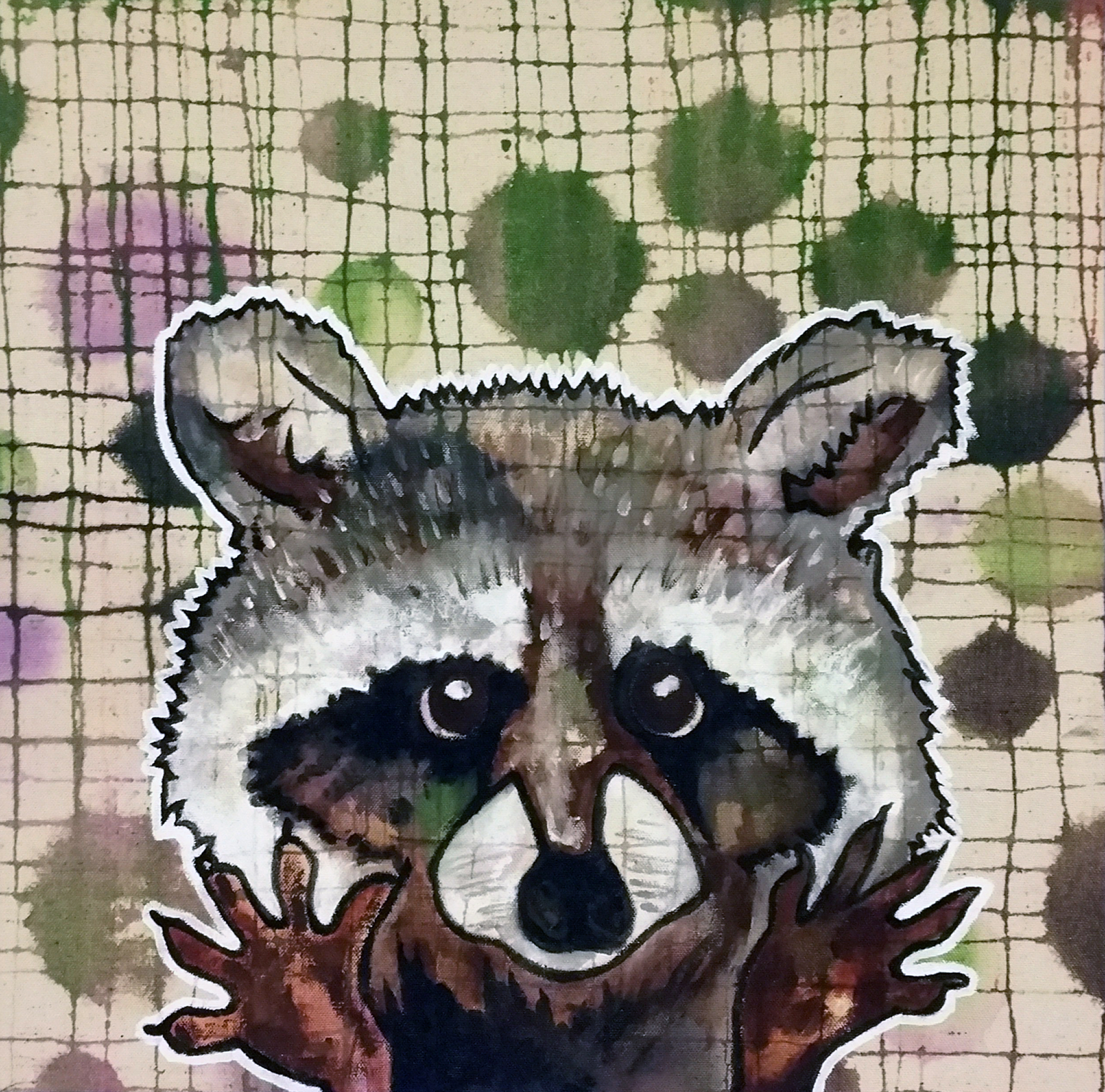 Racoon_sold