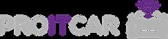 Logo_PROITCAR.png
