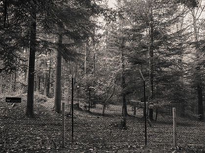 The wolf enclosure / cage at Adliswil Wildnispark in Zurich, Switzerland by Robin Cox.