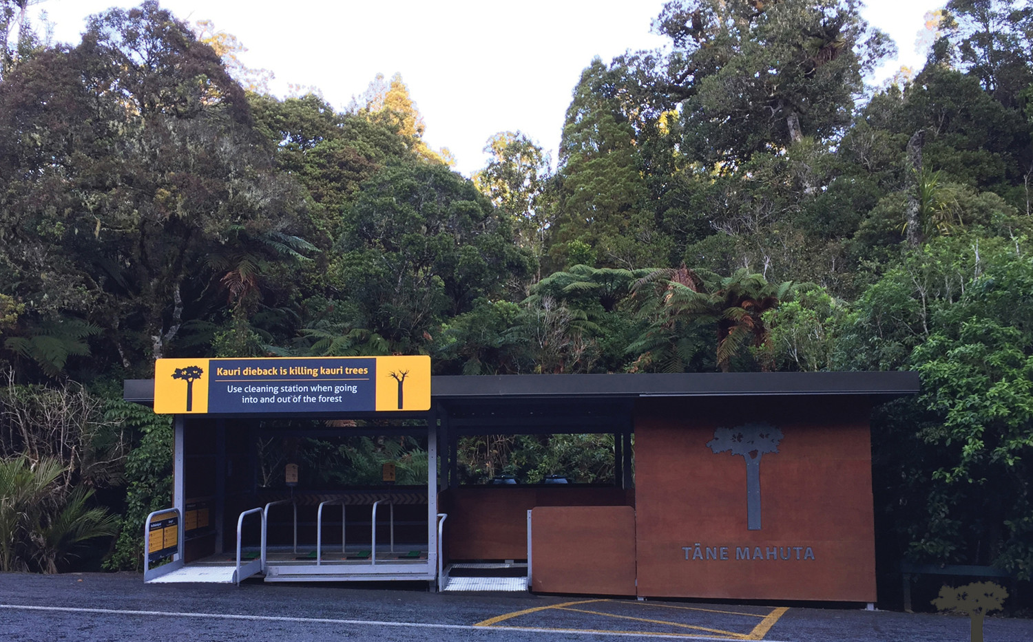 Tane Mahuta DOC Cleaning Station