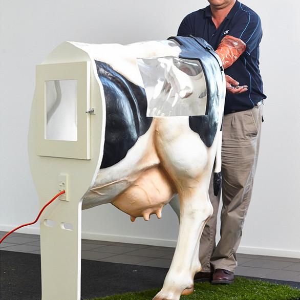 Henryetta AI Cow