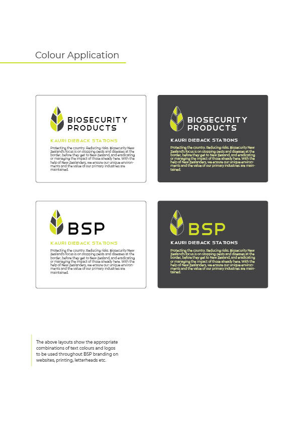 BSP Brand Manual11.jpg