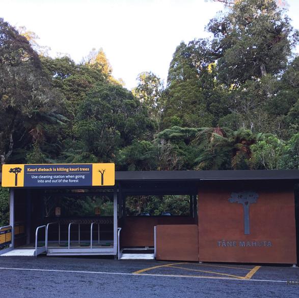 Tane Mahuta Cleaning Station