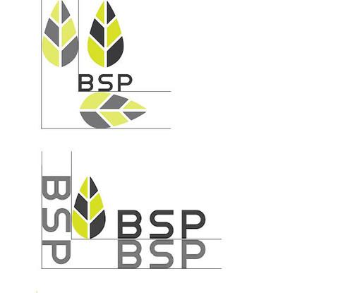 BSP Brand Manual5.jpg