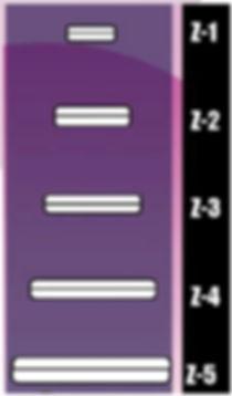 Z-Irons size chart.jpg