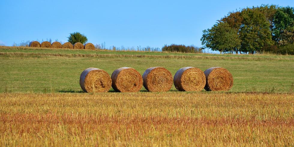 Delmarva Hay & Pasture Conference