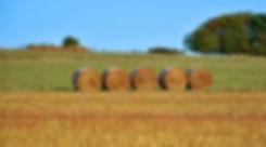 Hay Barrels