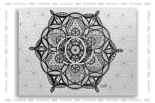 Infrutescência  - Arte Original - Nanquim