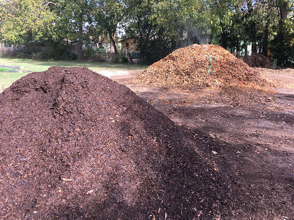15 compost piles.jpg