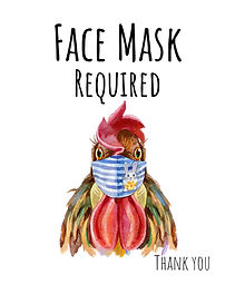 JPG-Chicken-Face-Mask-8x10.jpg