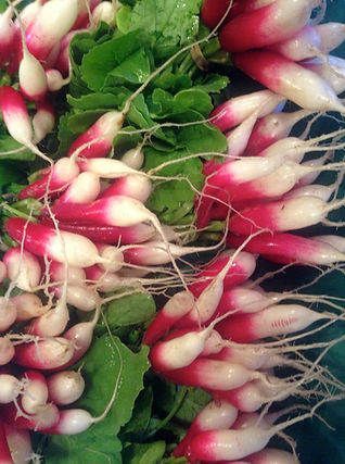 Ravishing Radishes!