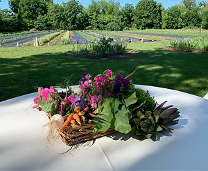 BCF Event Dinner Table in Field.png