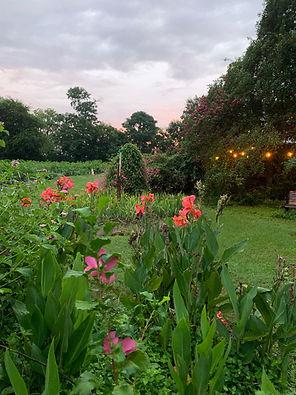 BCF Blissful Garden.JPG