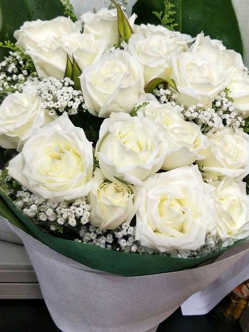 HB-WHITE ROSE
