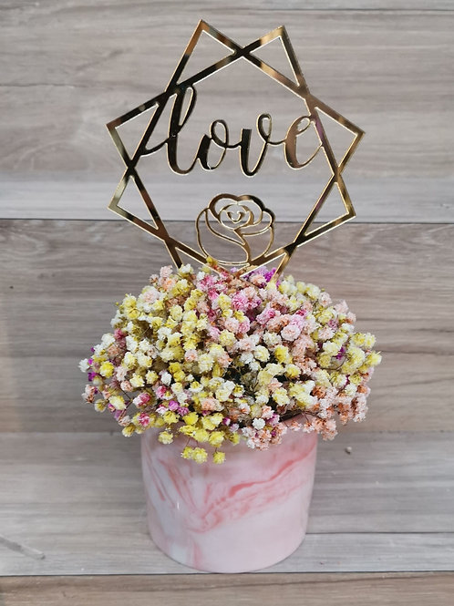 Dried Rainbow Baby's Breath in Marble Pot