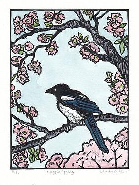 Magpie Spring