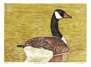 LINDA COTE-Canada Goose 13/28 Reduction Linocut
