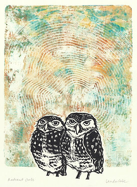 Radiant Burrowing Owls Monoprint 11