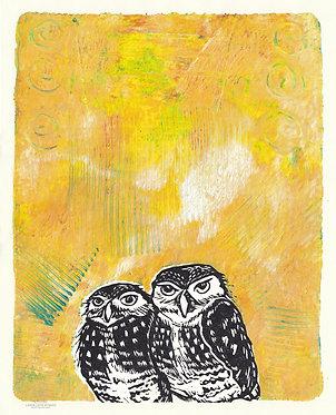 Radiant Burrowing Owls Monoprint 5