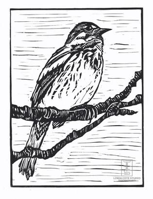 LINDA COTE-Song Sparrow Linocut